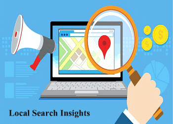 local-search-insights